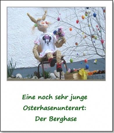 2007-dorfansichten-berghase-02