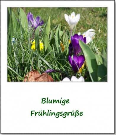 2007-fruehlingsimpressionen-blumengruesse