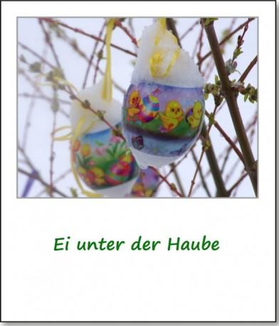 2008-ostersonntag-ei-unter-der-haube