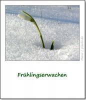 brauchtum-ostern-fruehlingserwachen