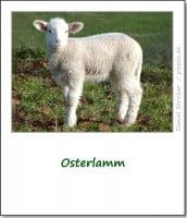 brauchtum-ostern-lamm