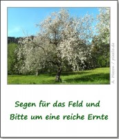 brauchtum-ostern-segen-fuers-feld