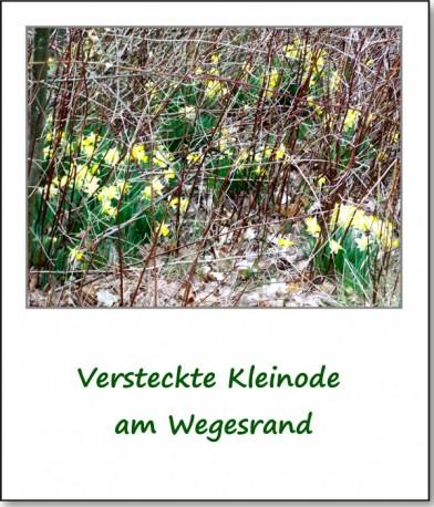 2008-dorf-langenwetzendorfer-osterspaziergang-12