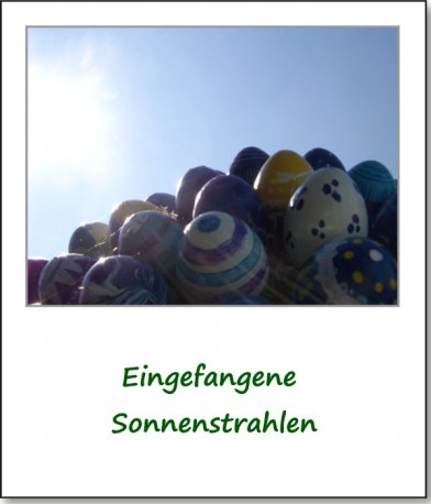 2009-anger-eierbaum-03