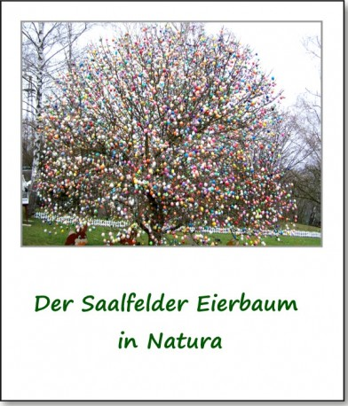 2009-eierbaum-saalfeld-01