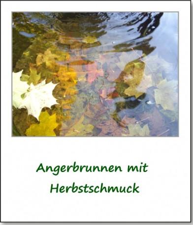 2009-herbstimpressionen-02