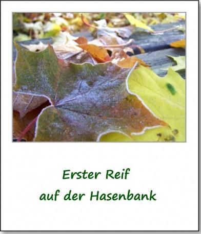 2009-herbstimpressionen-04