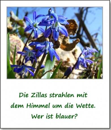 2011-fruehlingserwachen-06