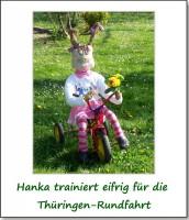 2011-park-hasen-01