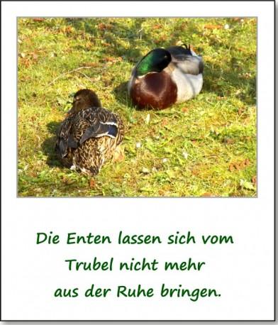 2012-park-parkgelaende-02