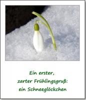 2013-fruehlingserwachen