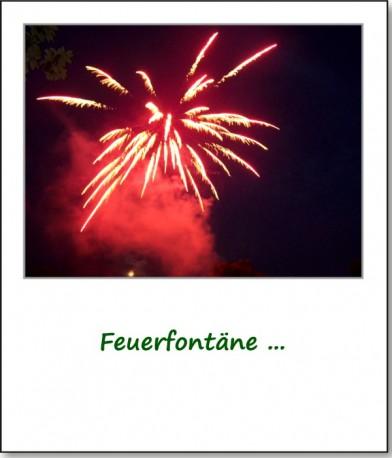 2008-parkfest-feuerwerk-04