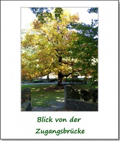 2008-reichenfels-01
