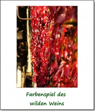 2008-reichenfels-04