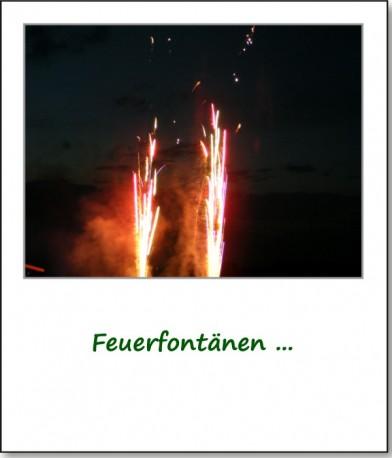 2009-laremo-feuerwerk-02