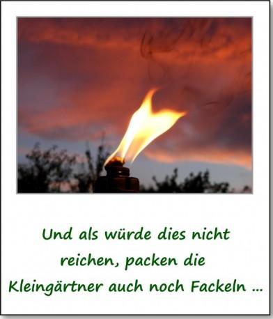 2010-gartenfest-90-jahre-schulgarten-06