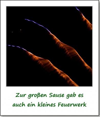2010-gartenfest-90-jahre-schulgarten-08