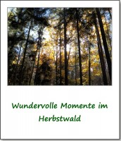 2012-hirschbacher-wald-von-seiner-schoensten-seite