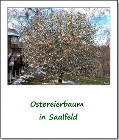 2012-querbeet-saalfeld-01
