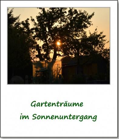 2013-gartenfest-04