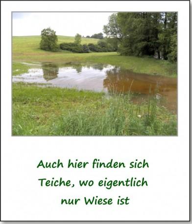 2013-hochwasser-leuba-montag-angerberg-02