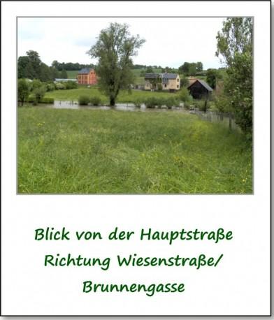 2013-hochwasser-leuba-montag-wiesenstraße-01
