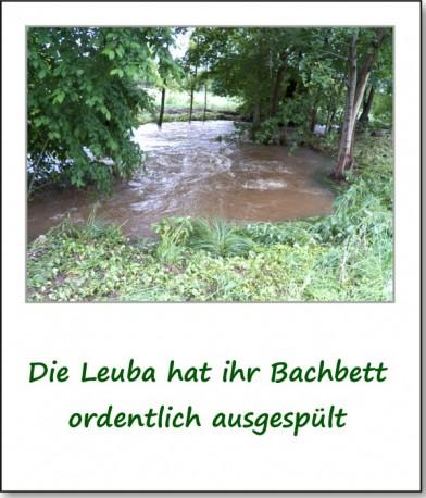 2013-hochwasser-leuba-montag-wiesenstrasse-05