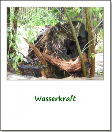 2013-hochwasser-leuba-montag-wiesenstrasse-08