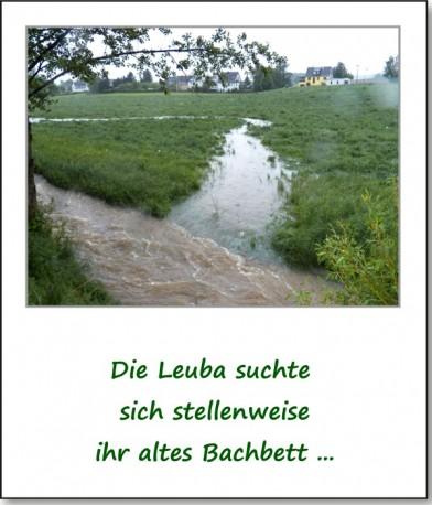 2013-hochwasser-leuba-sonntag-leubastrasse-siedelhofstrasse-04