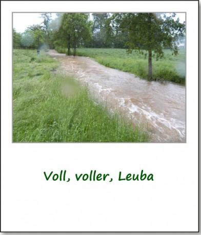 2013-hochwasser-leuba-sonntag-leubastrasse-siedelhofstrasse-07