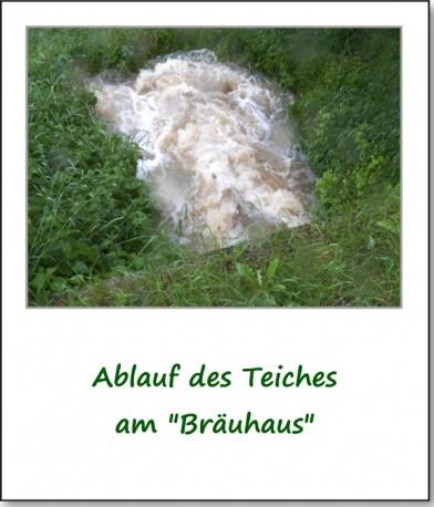 2013-hochwasser-leuba-sonntag-leubastrasse-siedelhofstrasse-10