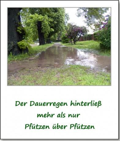 2013-hochwasser-leuba-sonntag-park-01