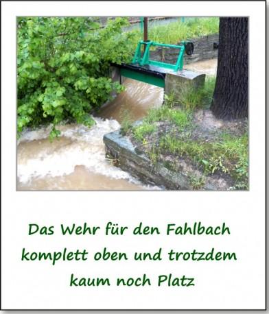 2013-hochwasser-leuba-sonntag-park-07