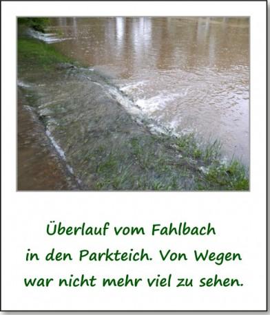 2013-hochwasser-leuba-sonntag-park-10