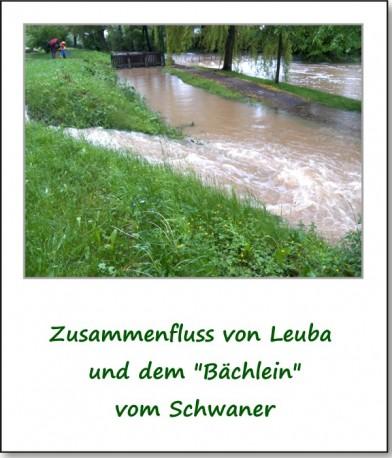 2013-hochwasser-leuba-sonntag-park-14