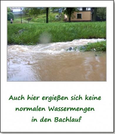 2013-hochwasser-leuba-sonntag-park-15