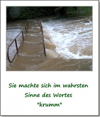 2013-hochwasser-leuba-sonntag-park-17