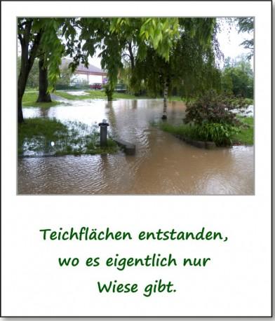 2013-hochwasser-leuba-sonntag-park-18