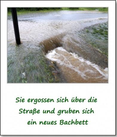 2013-hochwasser-leuba-sonntag-park-21