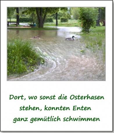 2013-hochwasser-leuba-sonntag-park-23