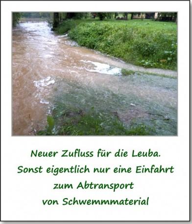 2013-hochwasser-leuba-sonntag-park-24