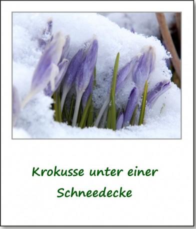 2013-ostern-im-schnee-05