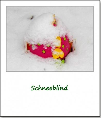 2013-ostern-im-schnee-11