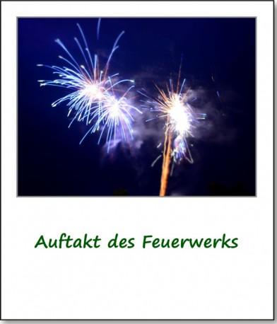 2013-parkfest-04