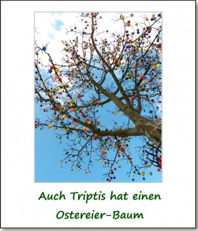 2013-querbeet-triptis-01