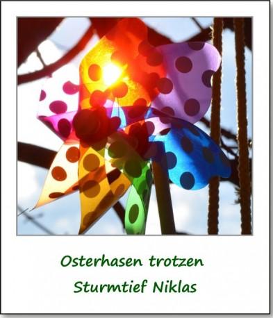 2015-osterhasen-trotzen-sturmtief-niklas